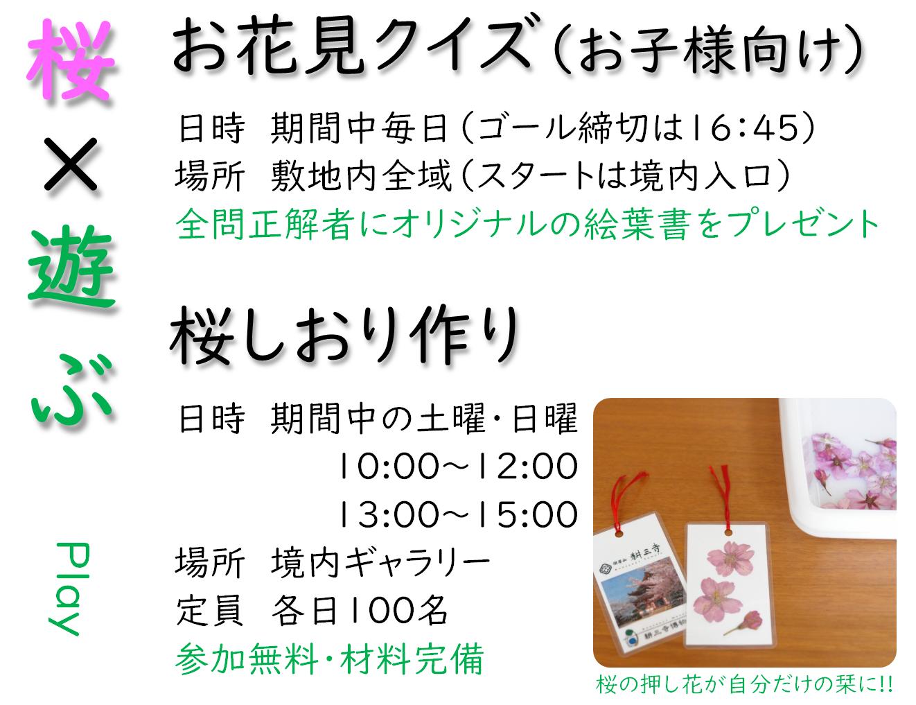 HP用(桜×遊ぶ)