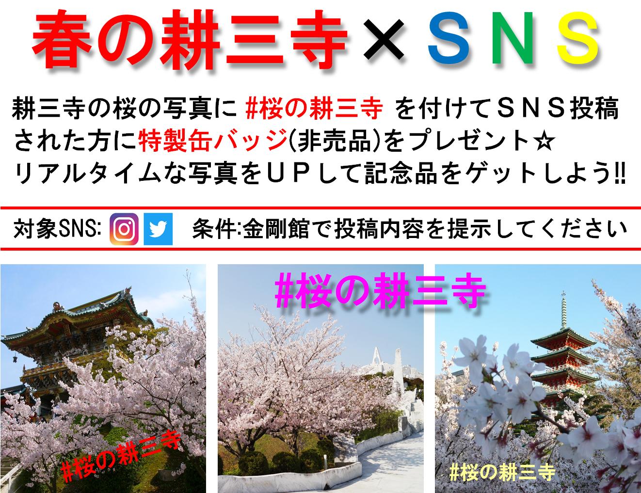 HP用(春の耕三寺×SNS)